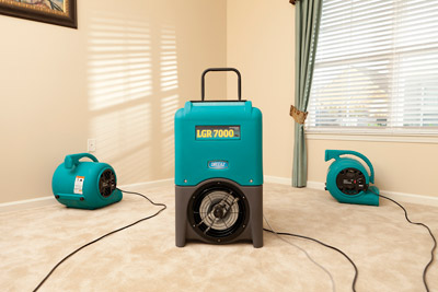 dehumidifier_air_movers_on_carpet